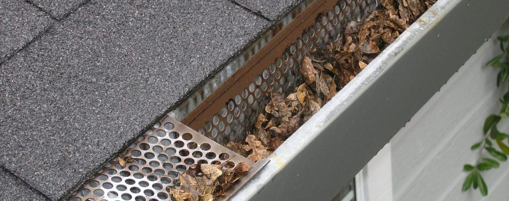 Time to clean your gutters. Gutter Cleaning Pros of Wixom can help.